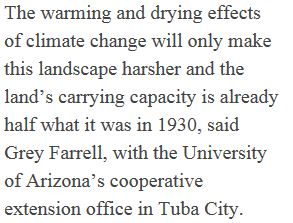 Navajo_Horses_Climate_Change-1