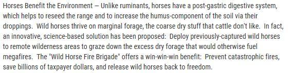 Benefits_of_Wild_Horses-1