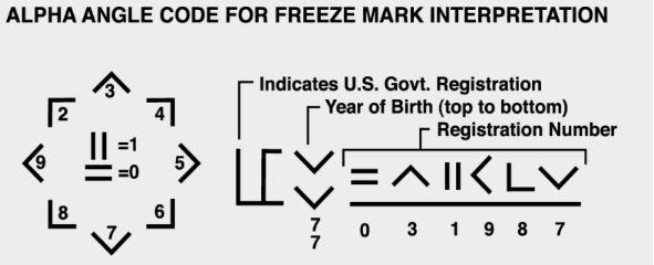 Freezemark_Decoder-1