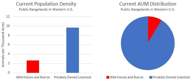 Wild Horse Overpopulation Current-1