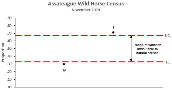 Assateague Census Nov 2019-1