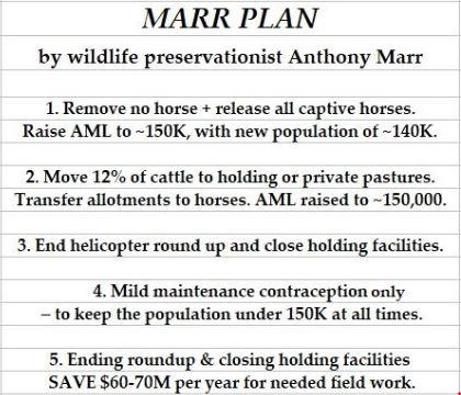 Marr Plan-1