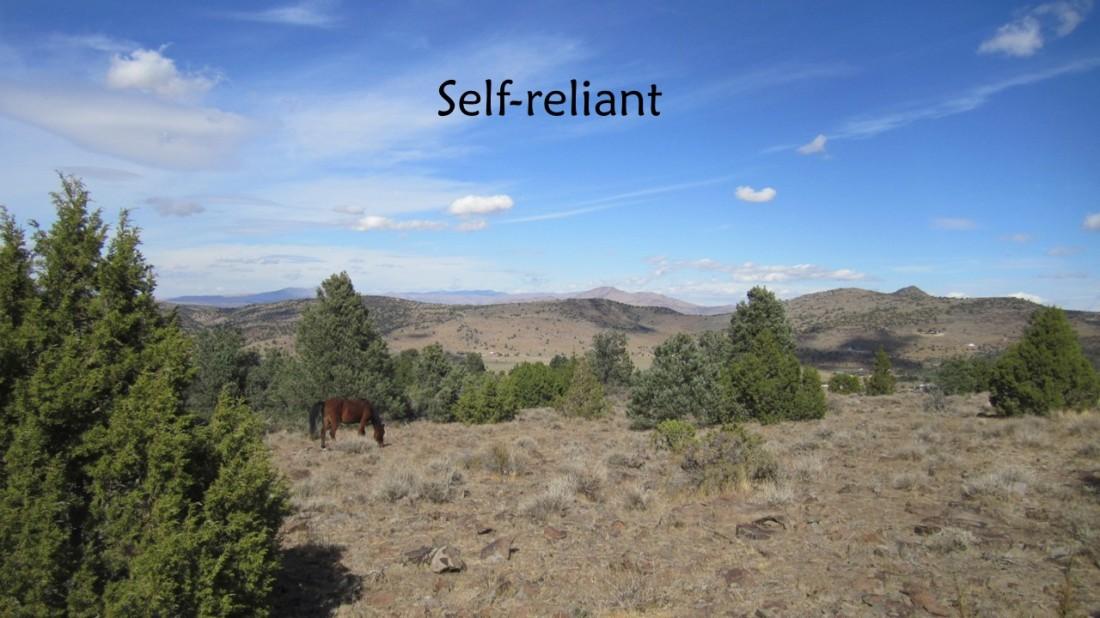 Self-Reliant-1
