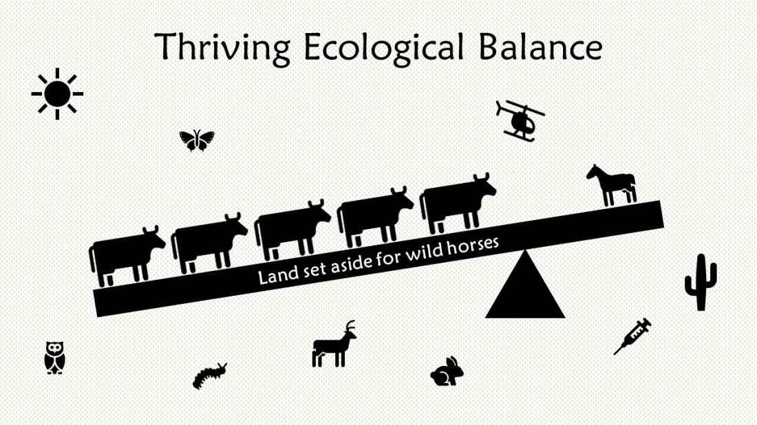 Thriving Ecological Balance-3