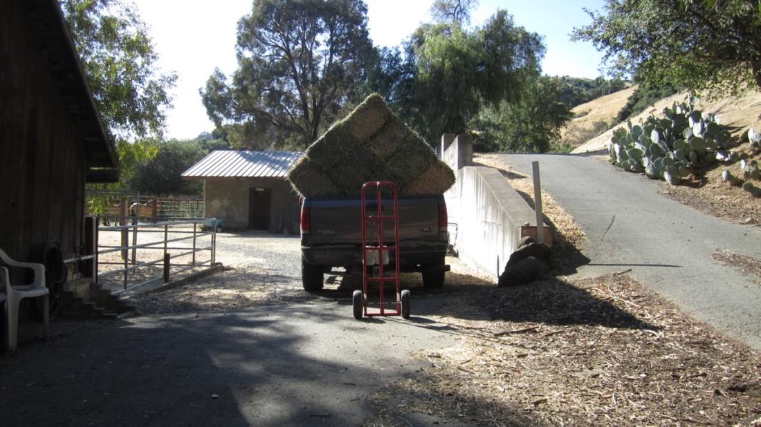 Unloading Hay 07-31-20-1