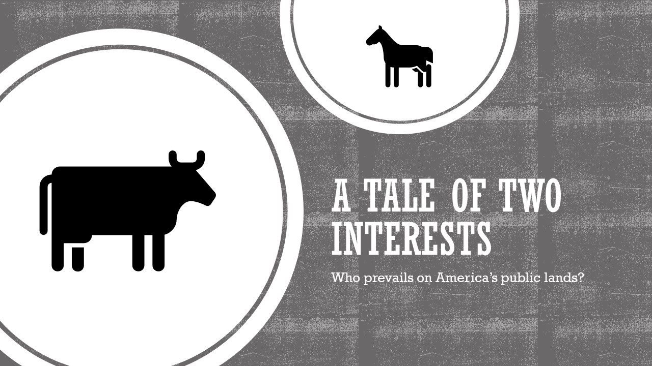 Tale of Two Interests-1