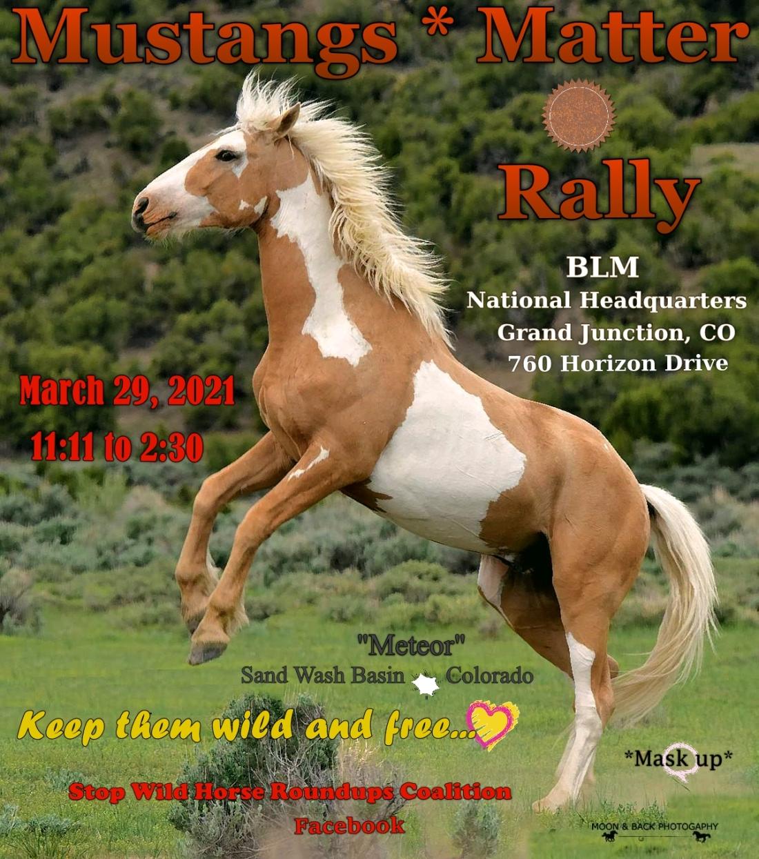 Mustangs Matter Rally Flyer 03-22-21